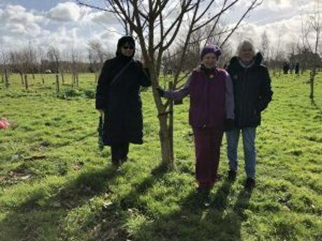 Tree Planting 2019 3