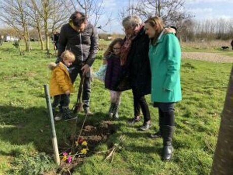 Tree Planting 2019 4