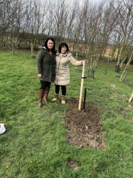 Tree Planting 2019 5