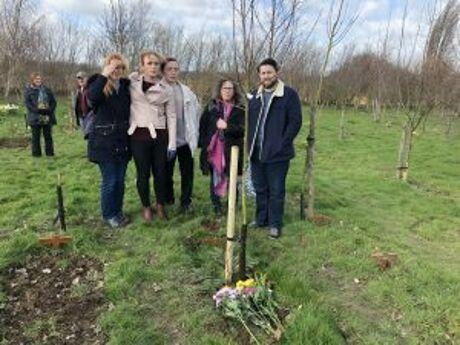 Tree Planting 2019 6