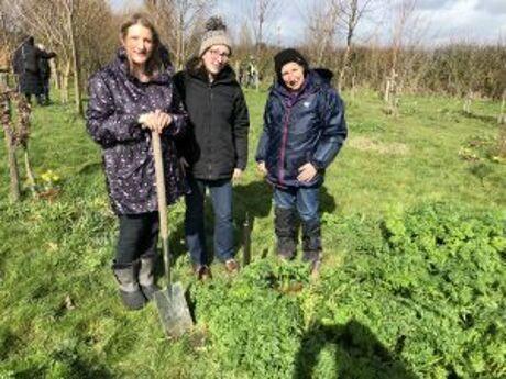 Tree planting 2019 8